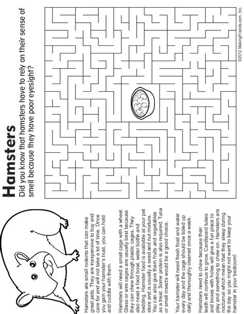 Hamsters make a great first pet for kids, especially those above the age of 5. Pet Hamster Maze, Fact and Coloring Page - MakingFriends