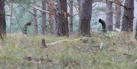 Guitarthai : ชายหนุ่มพบท่อประหลาดในป่าเยอรมัน และมัน ...