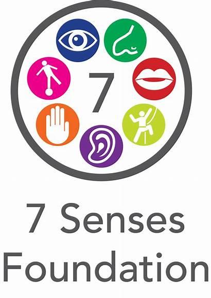 Senses Sense Sensory Organs Clipart Organ Processing