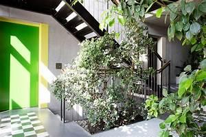 Pflanzen Im Treppenhaus : streitthema treppenhaus was ist erlaubt ~ Orissabook.com Haus und Dekorationen