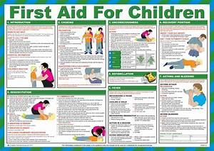 7 Best Images of Basic First Aid Booklet Printable ...