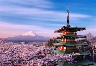 Sakura Japan Desktop Wallpapers Iphone Mobile Wallpapertag