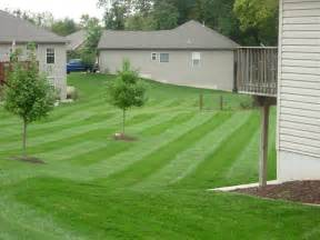 Grizzly Bear Lawn Care