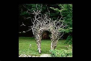 Ideas For Landscaping With Driftwood Paperblog