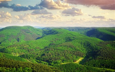 Greenery, Windows Desktop Images,nature Hd Landscape
