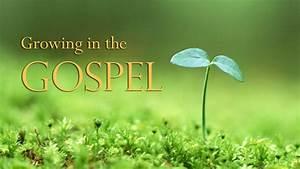 Category: Growing-in-the-gospel-series