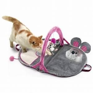 Tapis Pour Chat : tapis d 39 veil pour chaton jouet interactif pour chat karlie wanimo ~ Teatrodelosmanantiales.com Idées de Décoration