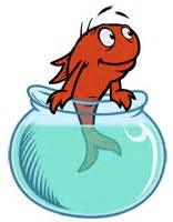 cat in the hat fish image character fish jpg dr seuss wiki fandom