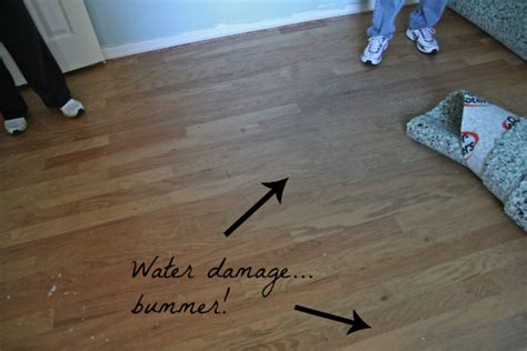 How To Replace Water Damaged Floor by Our Home A Flooring Surprise