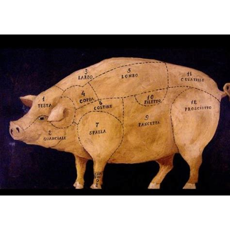 Pig Meat Chart Italian Illustrator Unknown