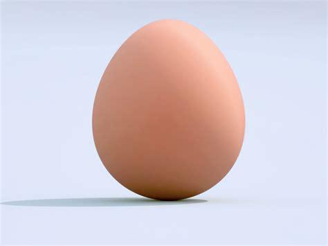 si鑒e la poste quien fue primero el huevo o la gallina soy filosofo taringa