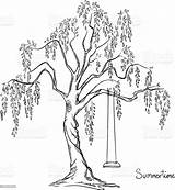 Swing Tree Vector Illustration Drawing Plant sketch template