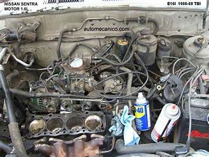 Nissan Sentra - Motores  Imagenes  Fotos De Motor