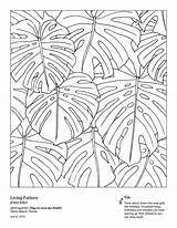 Coloring Pages West Curbed Adults Local Elm Chorus Drawing Line Artists Daily Newsletter Sign Plant Leaves sketch template