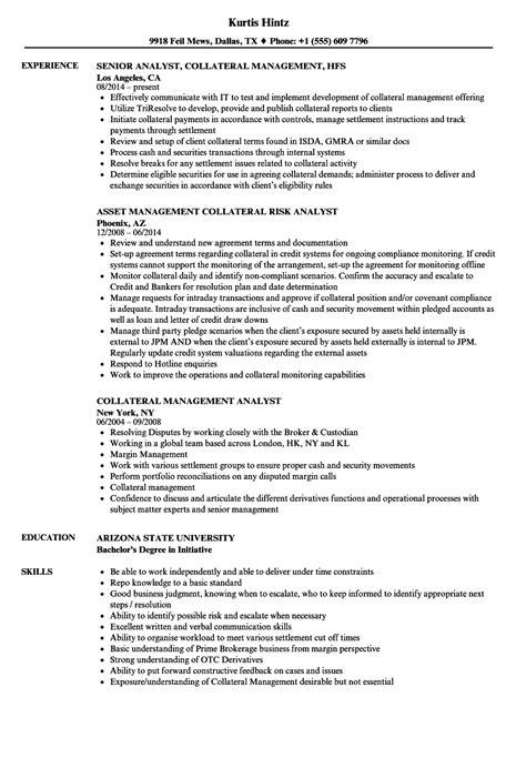 Data Analyst Resume Margins Search Resumes Best Resume