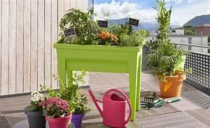 Jardiniere Sur Pied Plastique : guide d coration de jardin r ussie gifi ~ Dode.kayakingforconservation.com Idées de Décoration