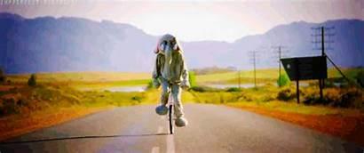Paradise Coldplay Chris Martin Gifs Gifer Animated