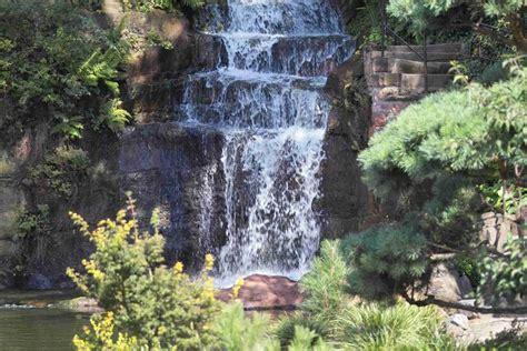 Japanischer Garten Events by Japanischer Garten Kaiserslautern Foto Bild Tiere Zoo