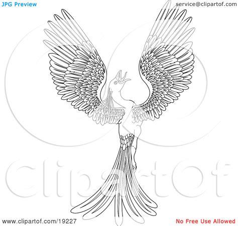 phoenix coloring pages    print