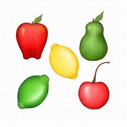 Fruit Clipart Cliparts Lime Fruits Clip Items