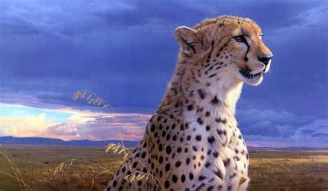 livro da natureza guepardo