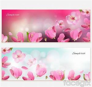 2 Beautiful Cherry Blossom Banner Vector Diagrams For Free
