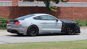 2019 Shelby Mustang GT500 Spy Photos photo