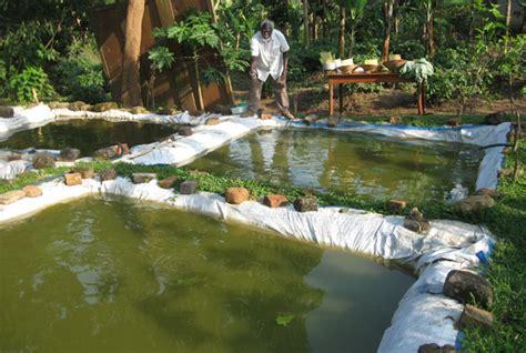 earns shsm  fish  year humanist uganda