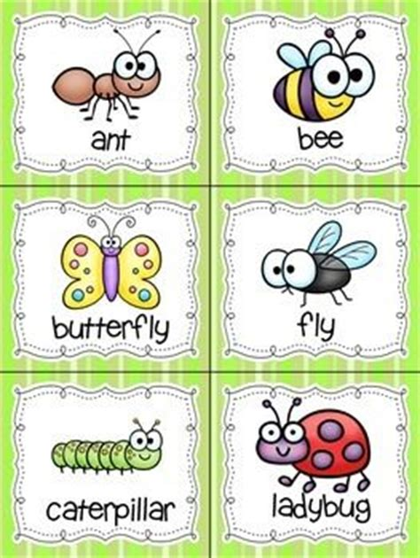 25 best ideas about insect activities on bug 423 | c615aa571551a0a0ed76341b8520098b