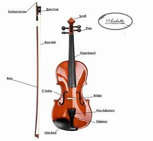 Basic Parts Of A Violin And Bow Chart In 2019