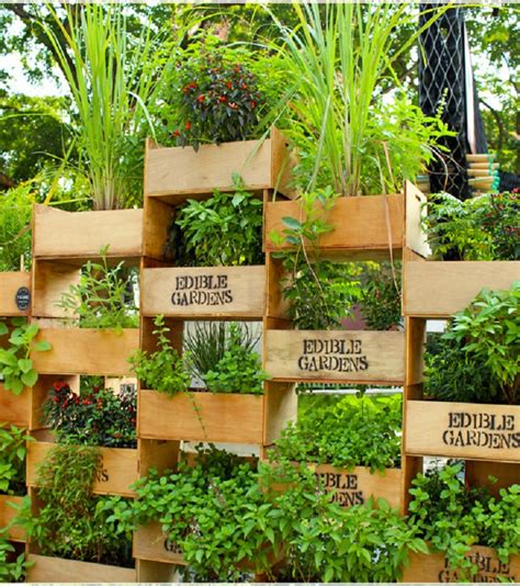 idea for garden top 10 cool vertical gardening ideas top inspired