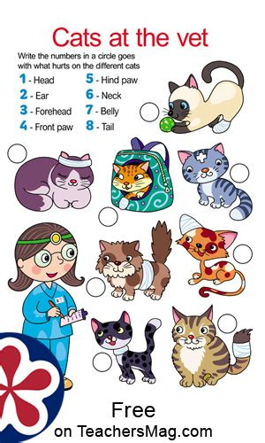 veterinarian worksheets teachersmagcom