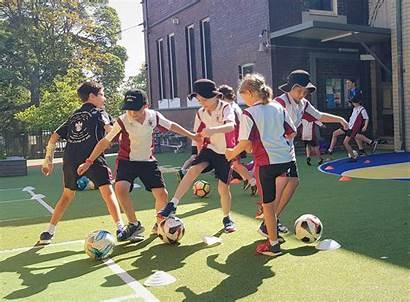 Sports Program Academy Programs Schools Elc Multi
