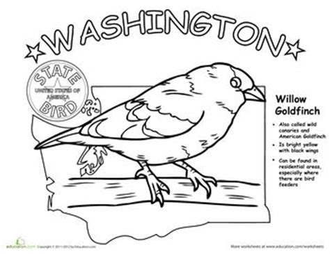 washington state bird facts 17 best images about washington state facts on washington state washington and