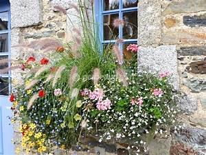 Comment Remplir Une Grande Jardinière : plantes pour jardini res peu gourmandes en arrosage ~ Melissatoandfro.com Idées de Décoration