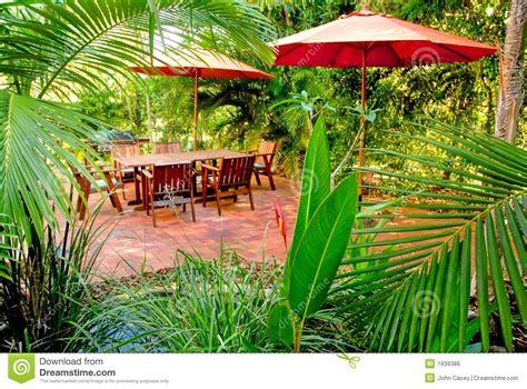 tropical backyard garden setting stock photo image