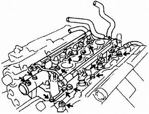 Repair Guides Engine Mechanical Timing Chain And  Html