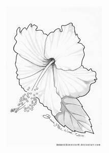 SNEWEEEEEN: hibiskus tattoo