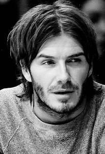 The Many Hairst... David