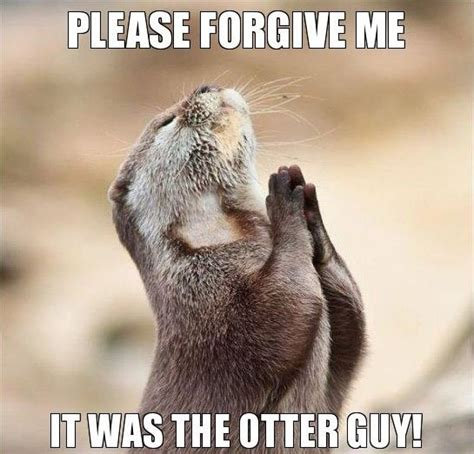 Forgive Me Meme - please forgive me words pinterest