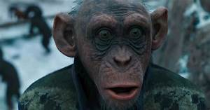That Ape Isn U2019t Wearing Deray U2019s Vest In  U2018planet Of The Apes U2019