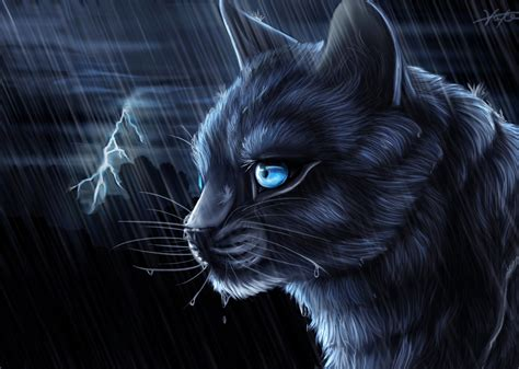 Warrior Cats Blue Star