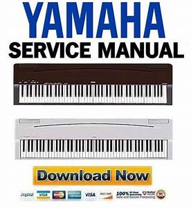 Yamaha P70   P70s Service Manual  U0026 Repair Guide
