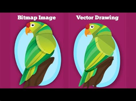 Upload your file, our tool will convert it automatically to svg format in one click. Easily convert bitmap images into vector drawing ...