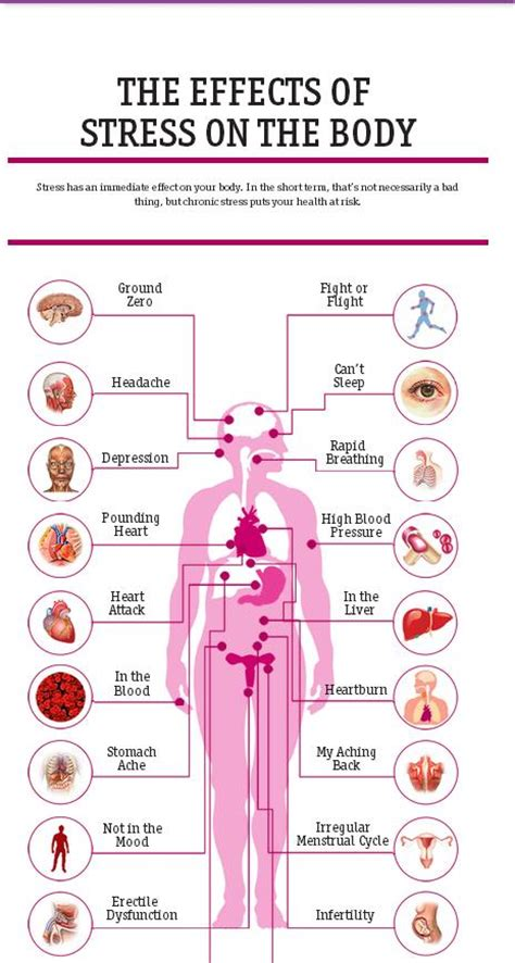 20 Effects that Stress has on the body   POGO Physio Gold ...