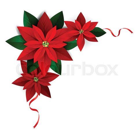 christmas corner decoration  white poinsettia