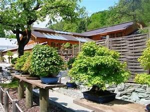 Bonsai und formgeholze buga 2011 in koblenz schoener for Garten planen mit bonsai 7 sub board