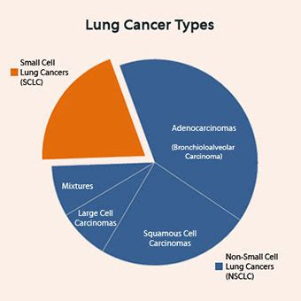 lung cancer symptoms signs stages treatment types