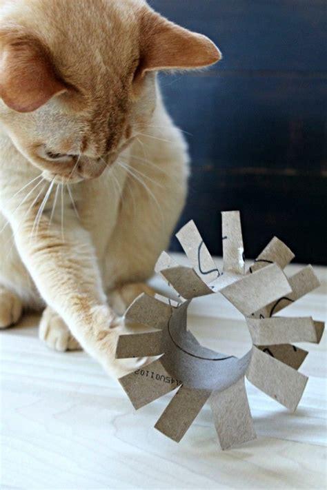 katzenspielzeug basteln ideen die besten 25 katzenspielzeug selber machen ideen auf katzenspielzeug selber bauen