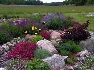 Hang Bepflanzen Bodendecker : steingarten polsterstauden bodendecker farbtupfer lila ~ Lizthompson.info Haus und Dekorationen